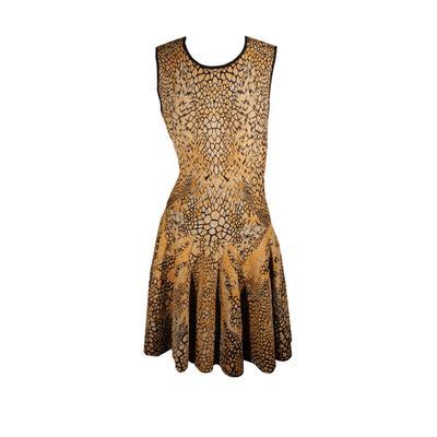 Alexander McQueen Size Extra Small Metallic Printed Dress