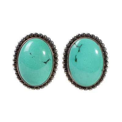 Stephen Dweck Turquoise Clip Earrings