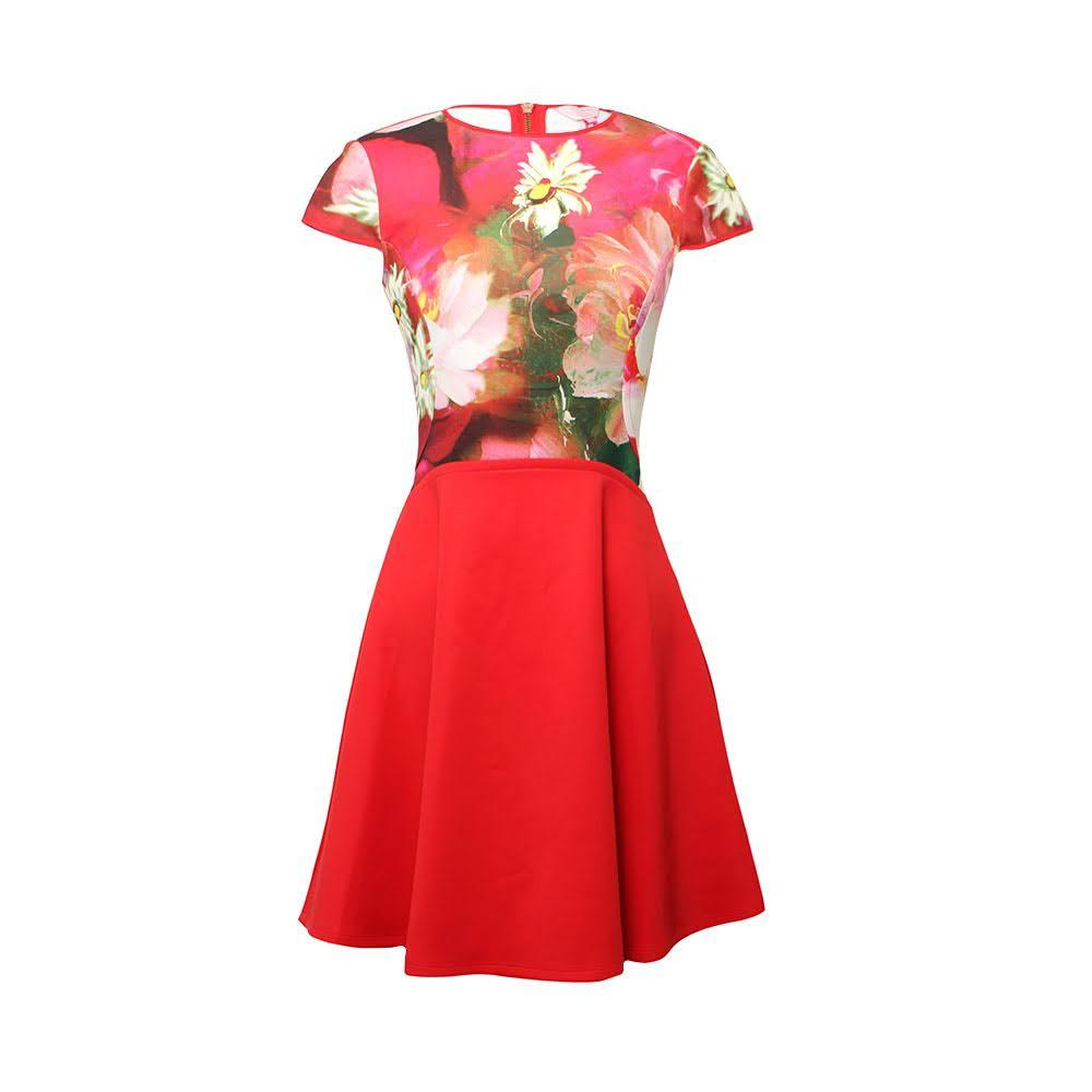 Ted Baker Size 4 S Floral Dress