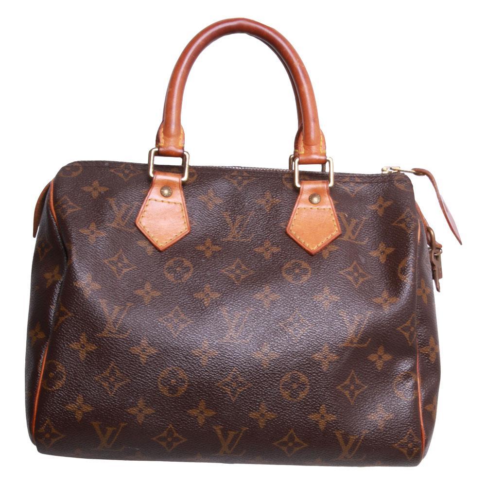 Louis Vuitton Mono Speedy Bag
