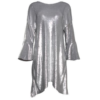 Iro Size 36 Silver Sequin Dress